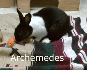 BB Archemedes