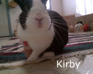 BB Kirby