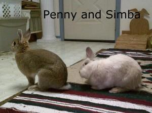Penny Simba