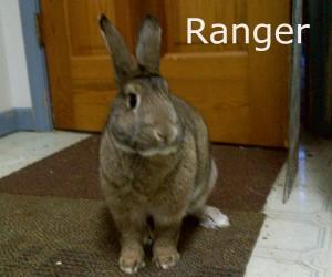 ranger1